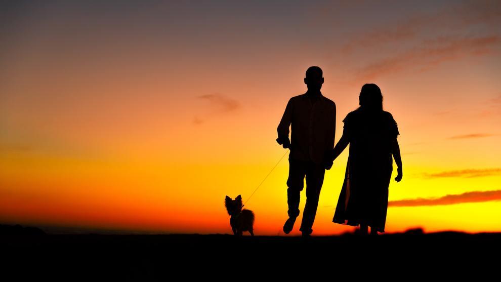 couple & dog walking towards sunset