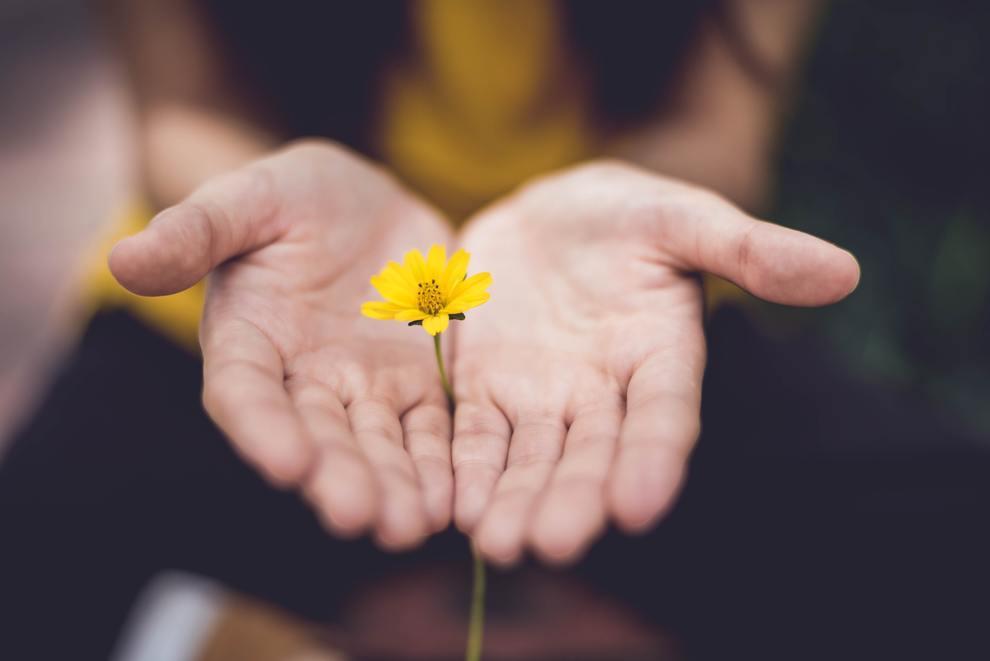 flower offering giving hands